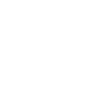 brooklyn-logo
